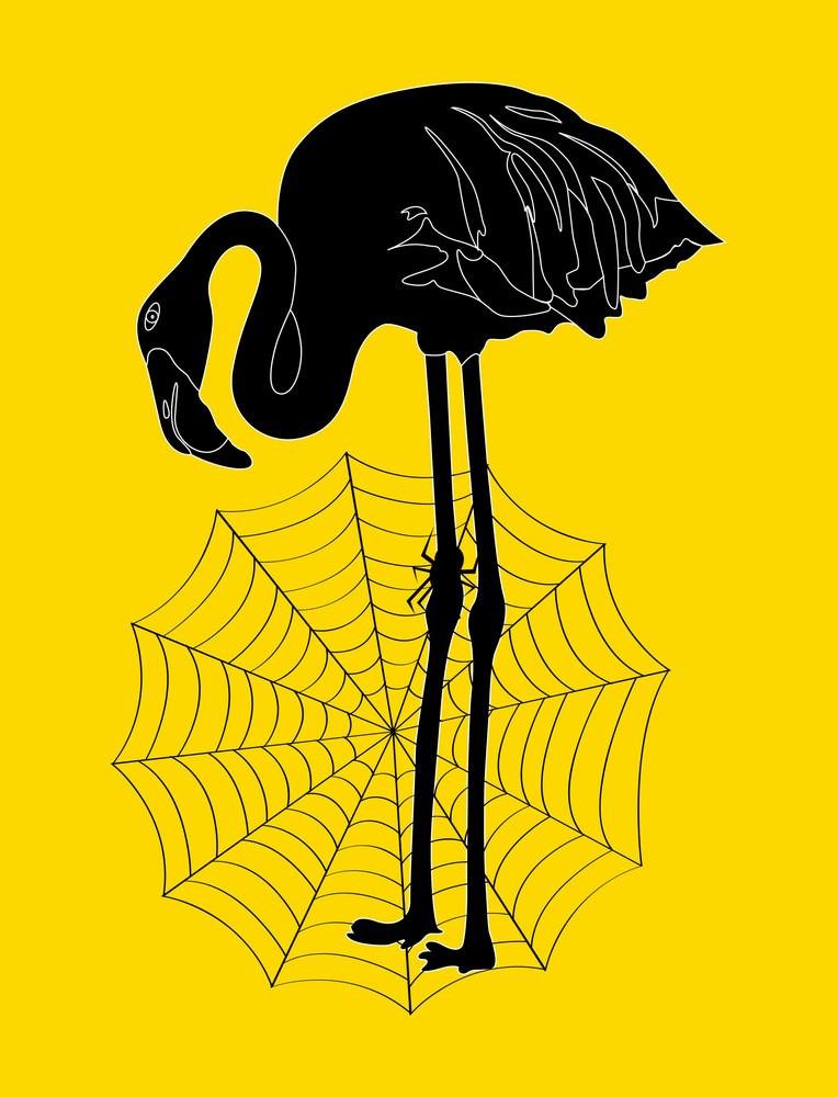 Heron Bird With Cobweb