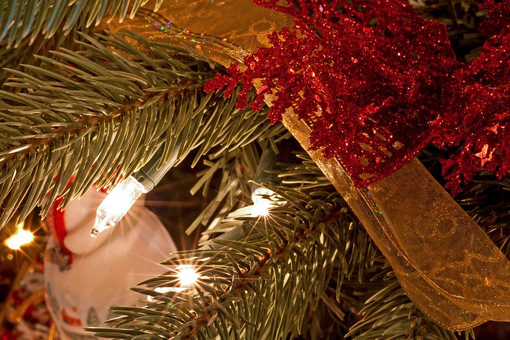 Holiday Decor Tree Lights