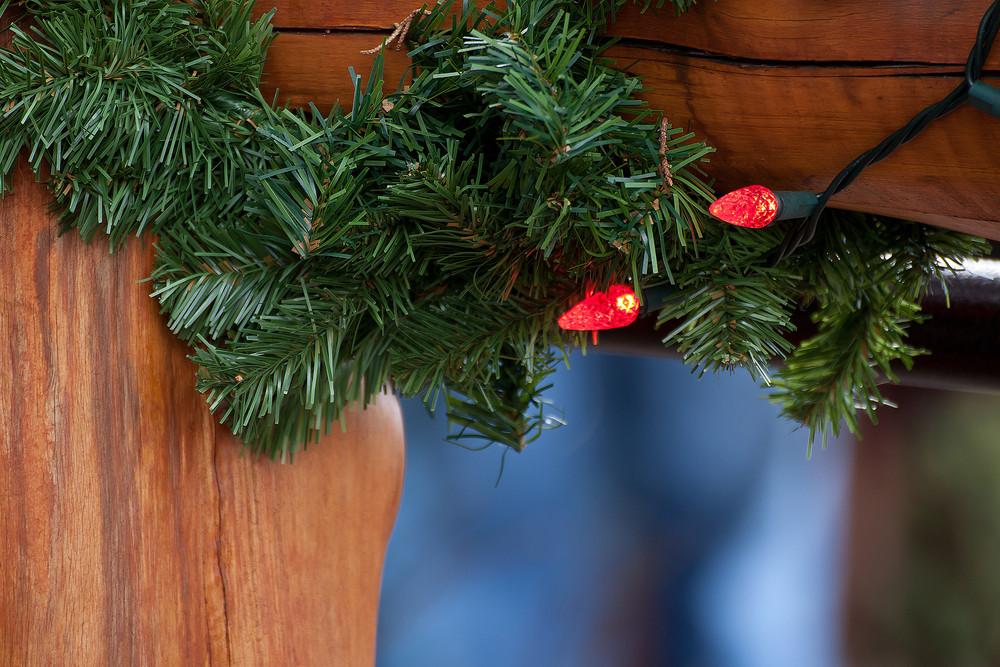Holiday Decor Western Christmas Branch