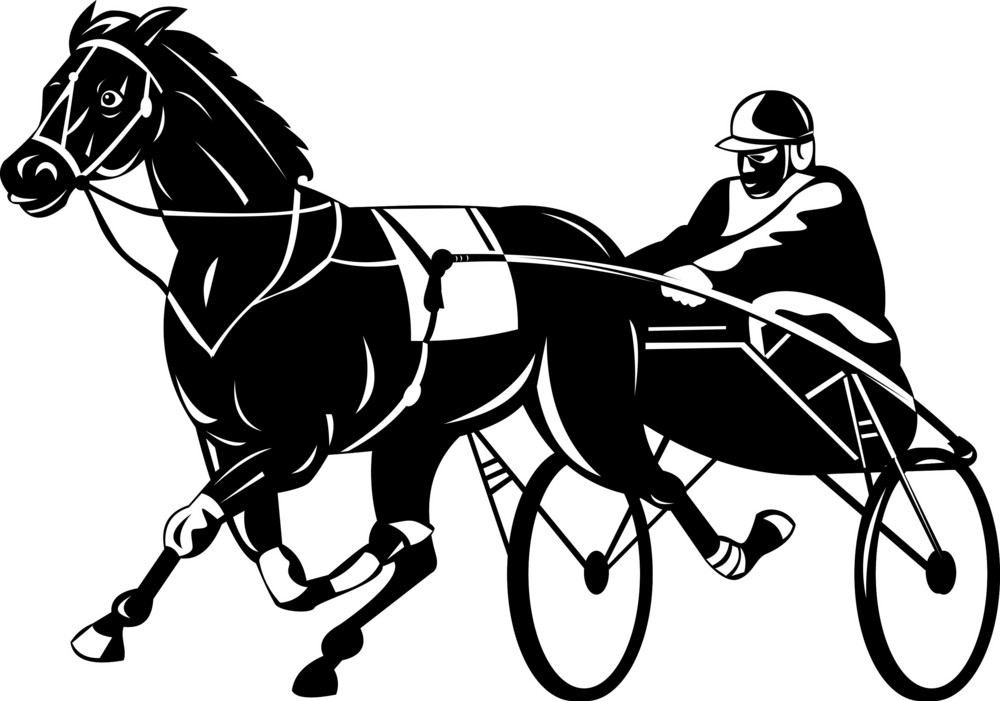 Horse And Jockey Harness Racing Royalty Free Stock Image