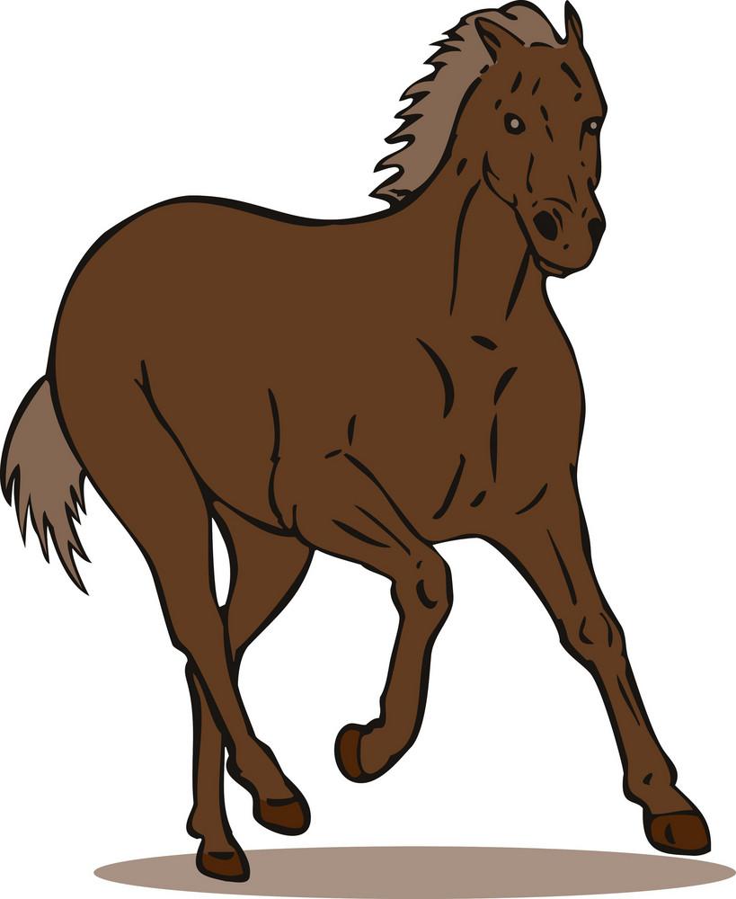 Horse Galloping Retro