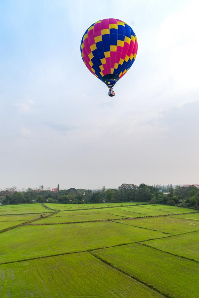Hot air balloon on green rice field