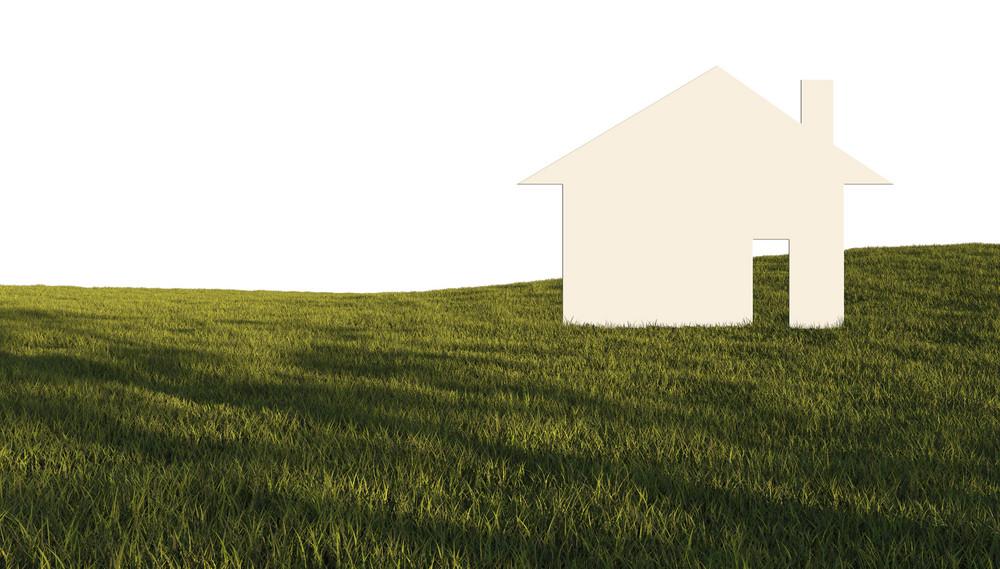 House In Green Field