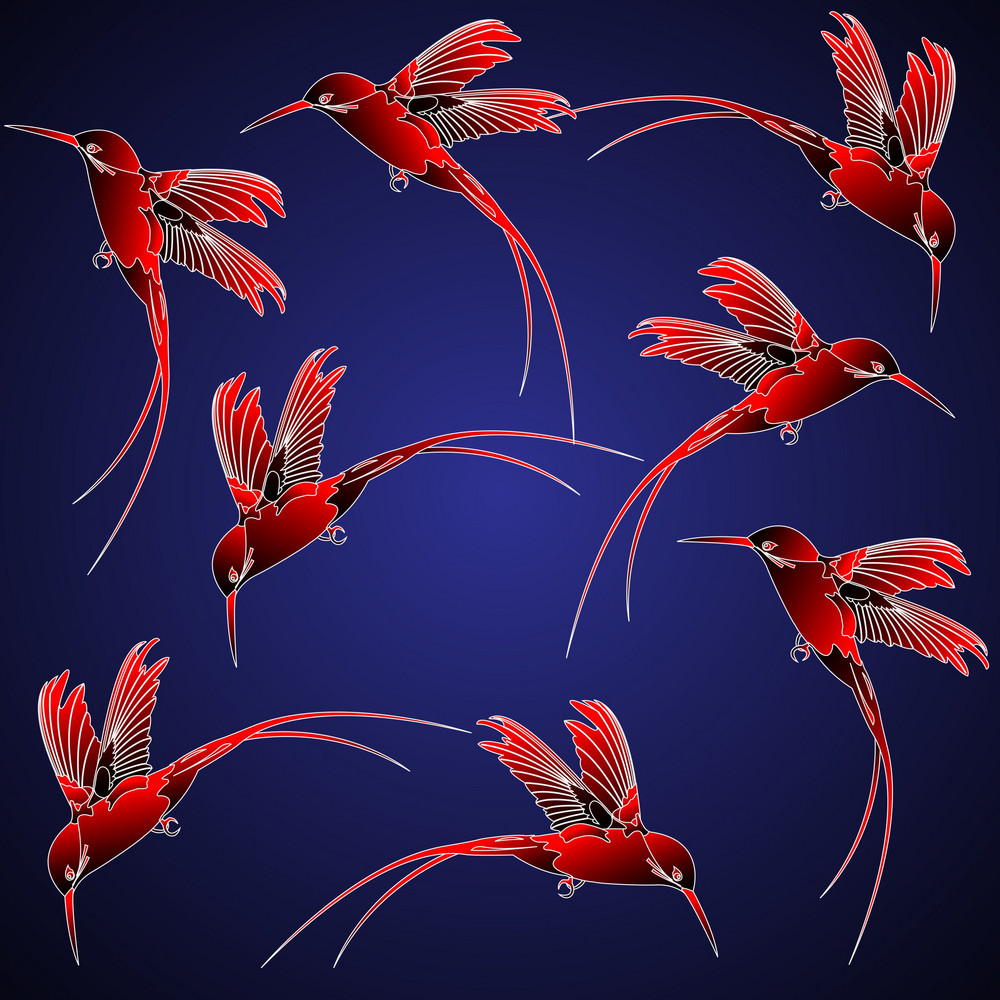 Hummingbird In Chinese Style