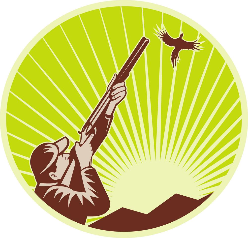 Hunter With Shotgun  Rifle Aimng At Pheasant
