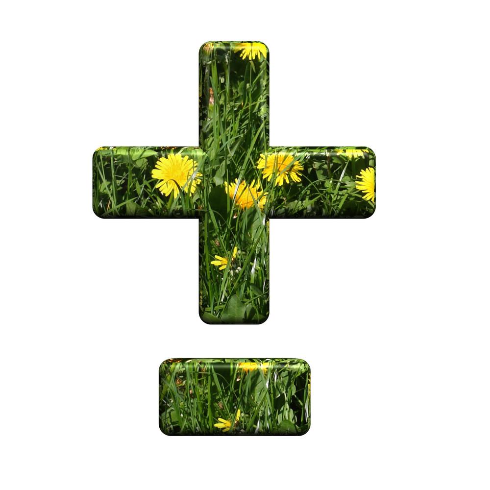 Hyphen, Minus, Plus Marks From Floral Alphabet Set