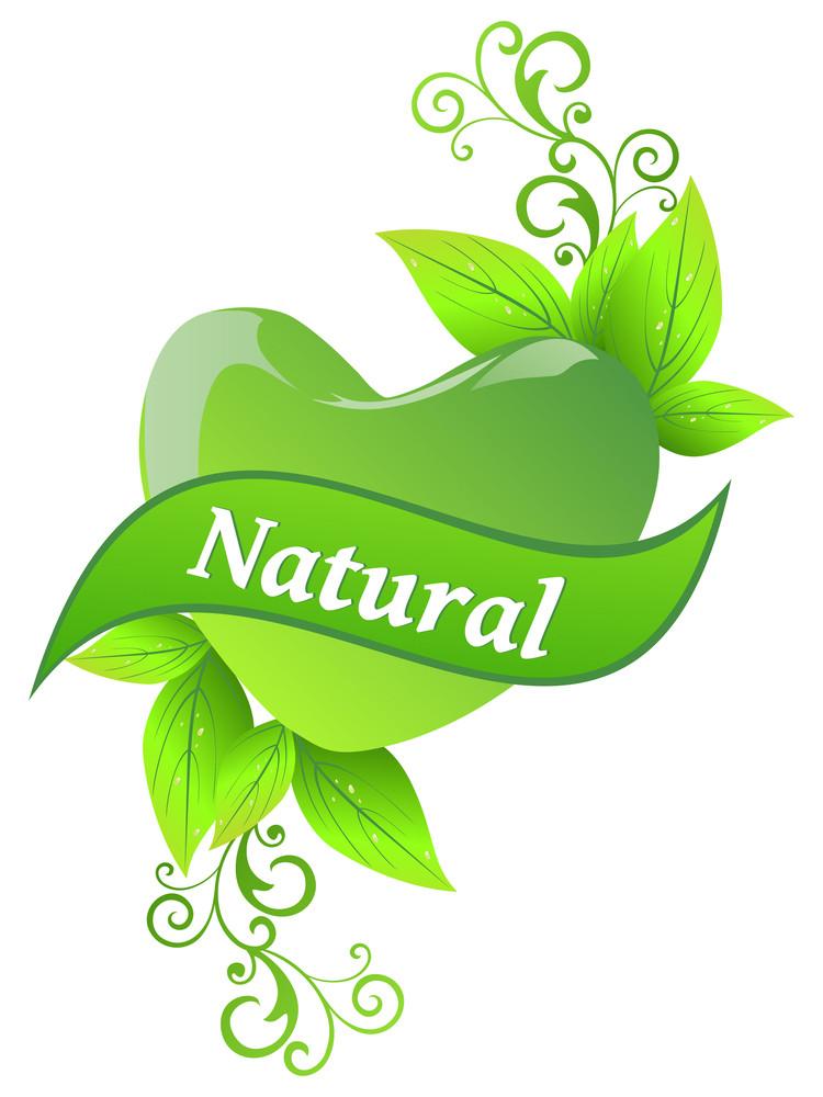 Illustration For Nature