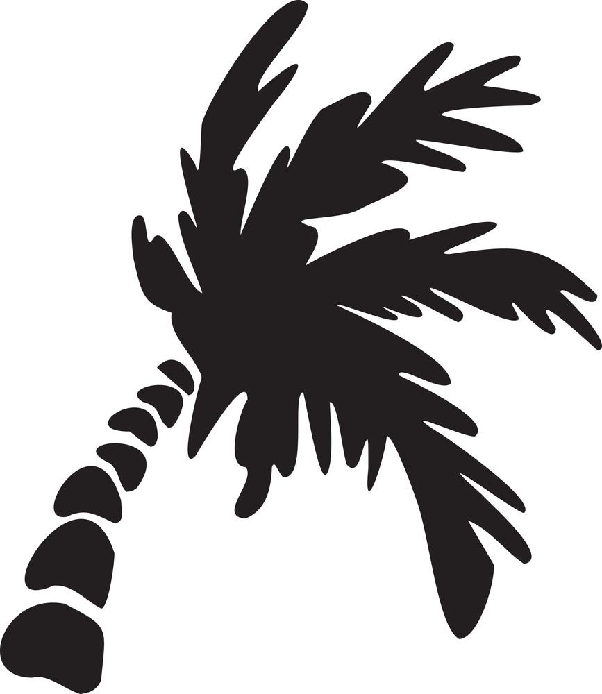 Illustration Of A Palm Tree.