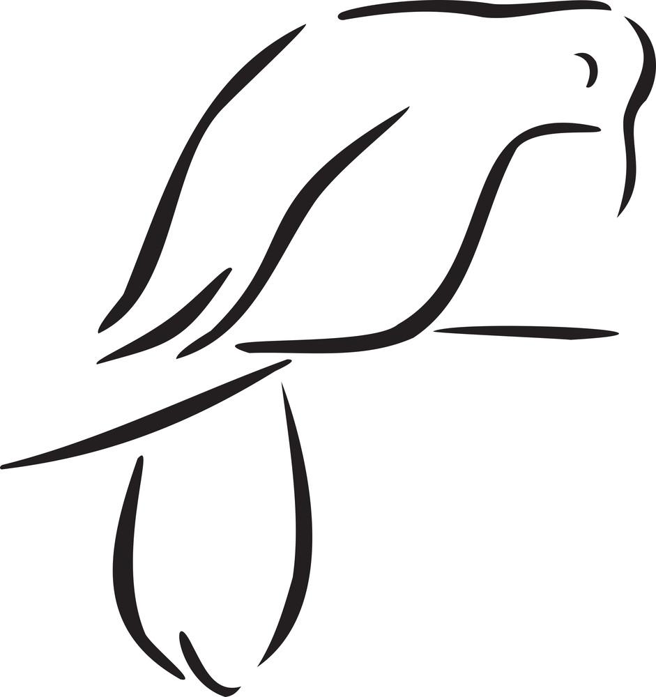 Illustration Of A Pigeon.