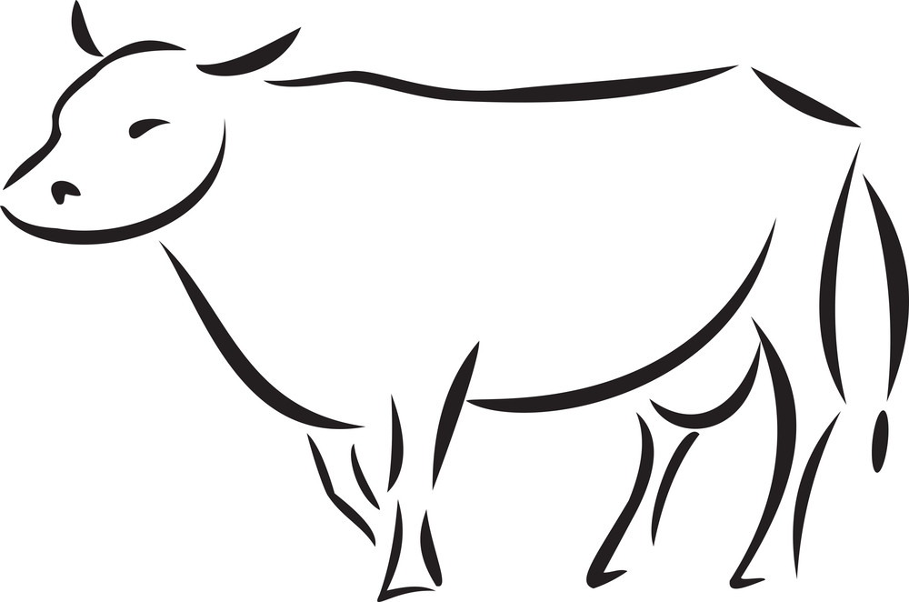 Illustration Of A Standing Cow.