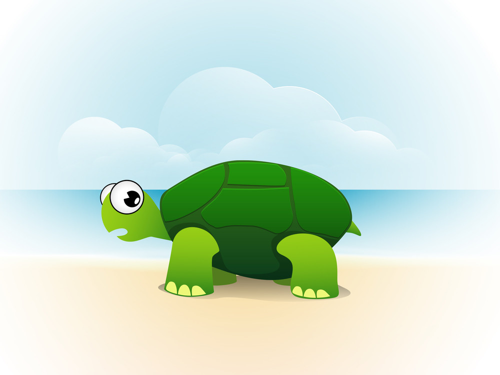 Illustration Of A Tortoise On Nature Background.