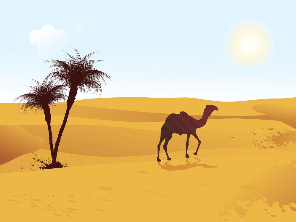 Illustration Of Camel Walking
