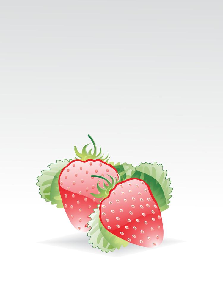 Illustration Of Glossy Strawberry