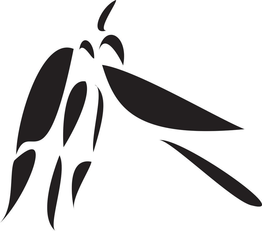 Illustration Of Leaf Stalk.