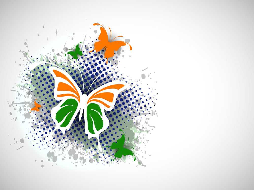 Indian Flag Butterfly On Creative Background.