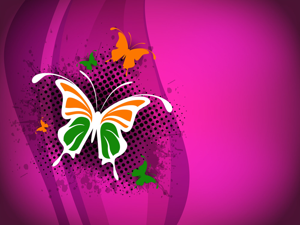 Indian Flag Butterfly On Shiny Pink Background.