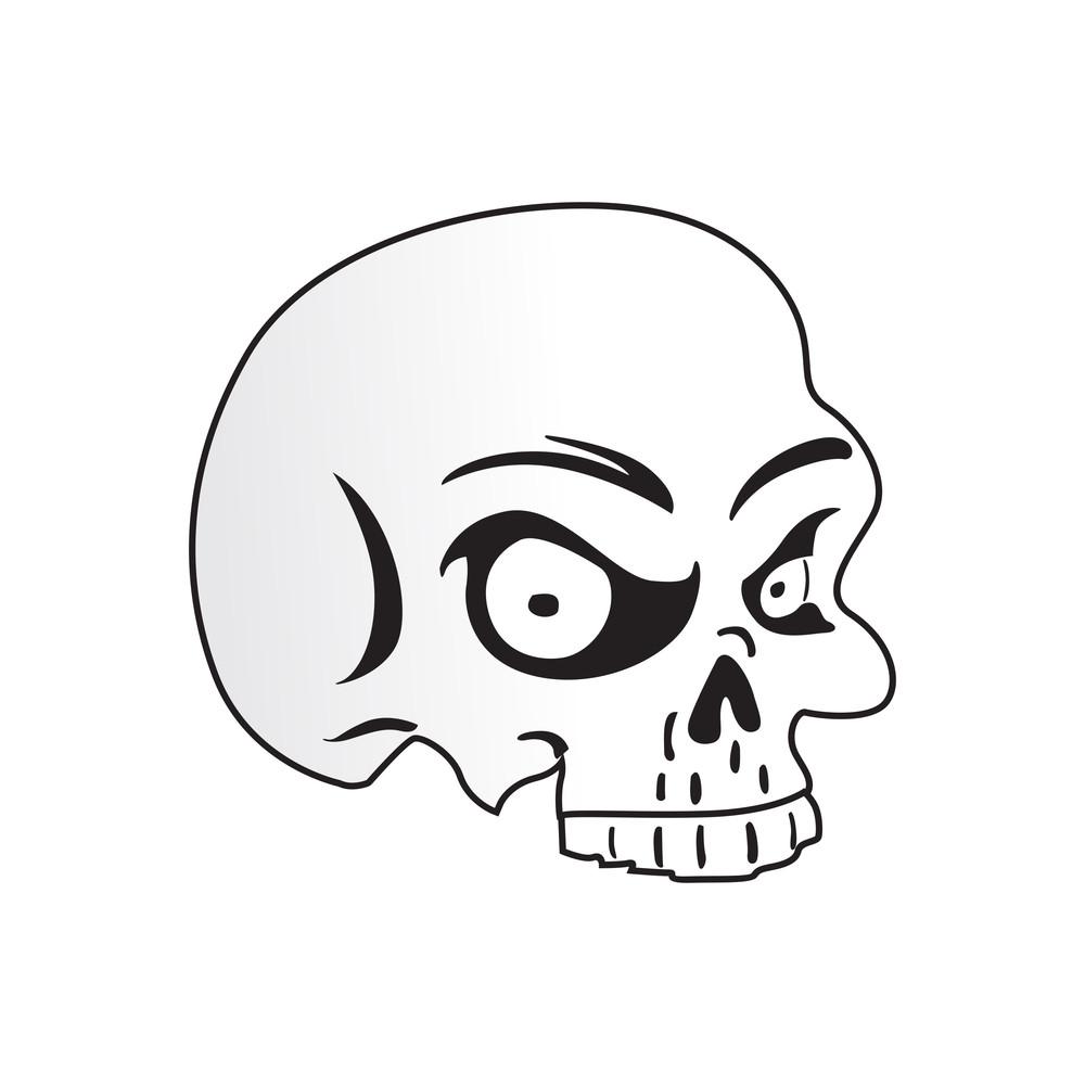 Isolated Skull On White Background