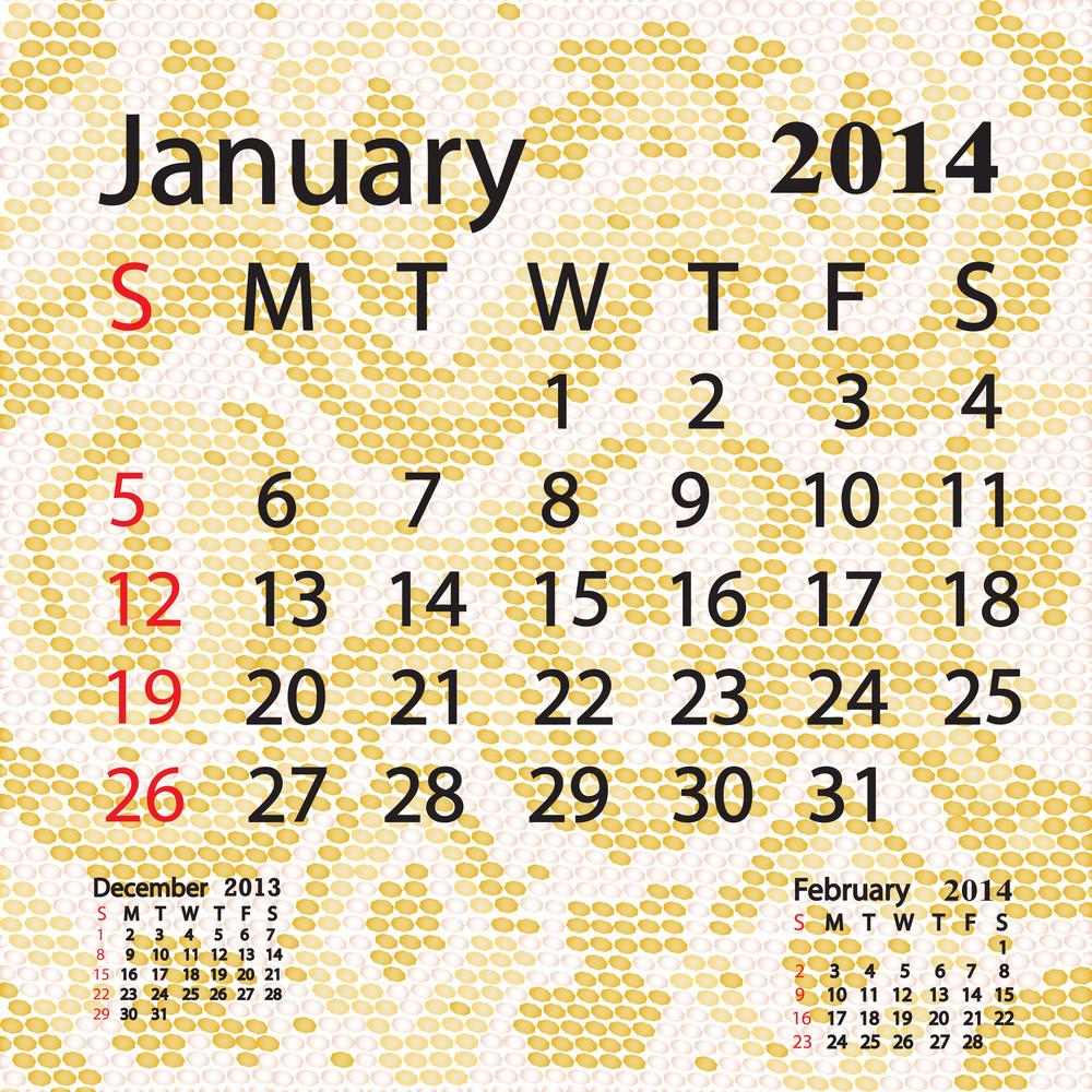 January 2014 Calendar Albino Snake Skin