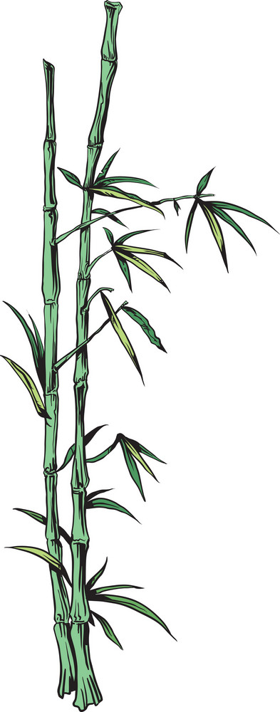 Japanese Vector Bamboo