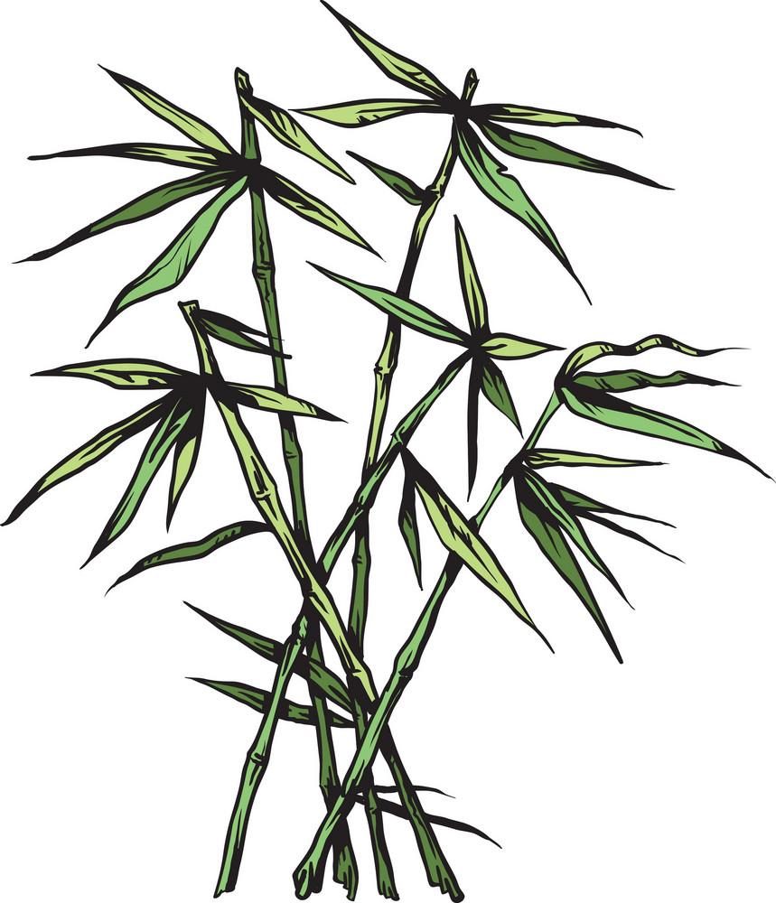 Japanese Vector Bamboo