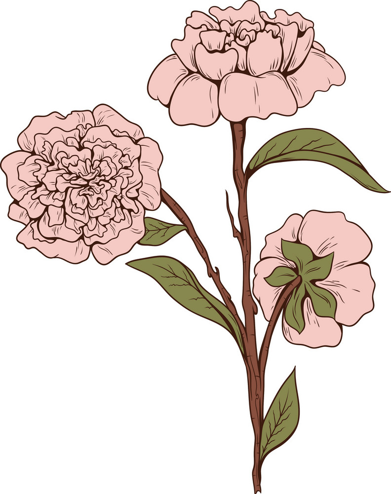 Japanese Vector Flowers