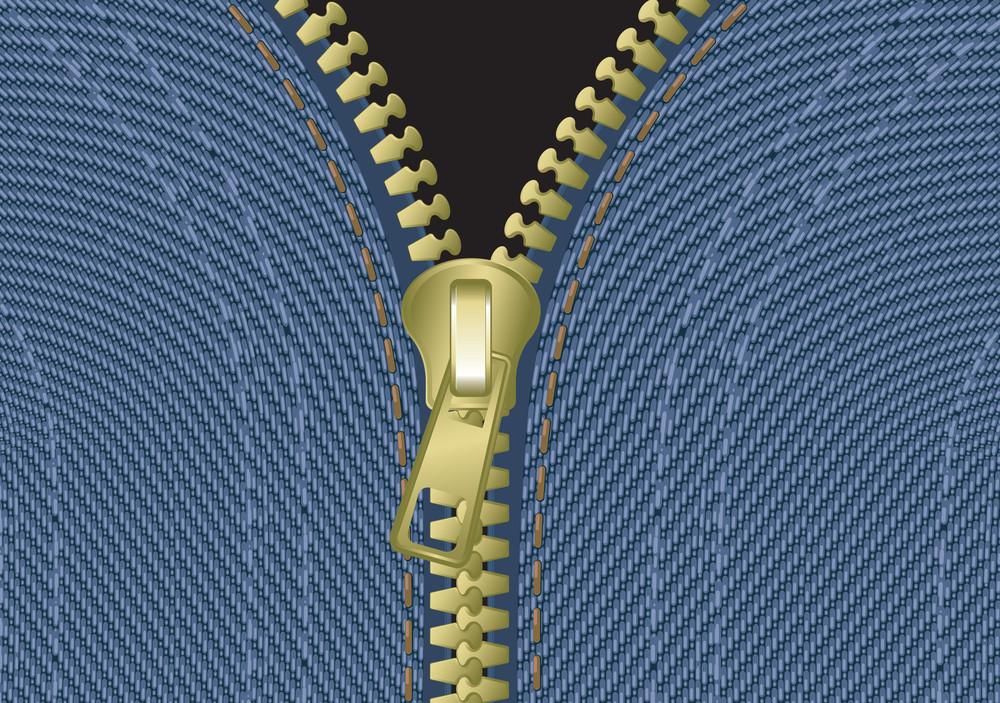 Jeans Zipper. Vector.
