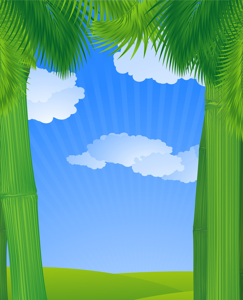 Jungle Sky. Vector Background.