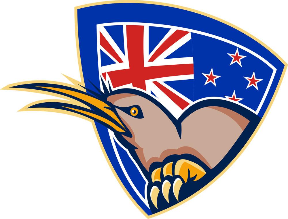 Kiwi Bird New Zealand Flag Shield Retro