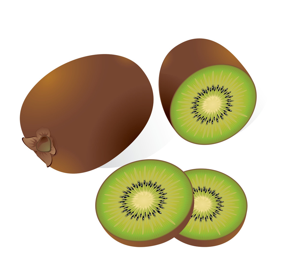 Kiwi. Vector Illustration