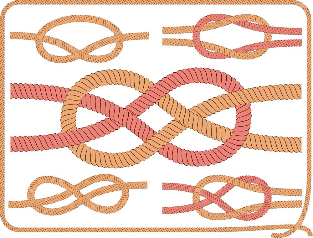 Knots. Vector.