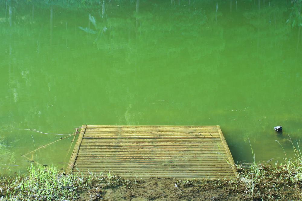 Lake Emerald, Thailand