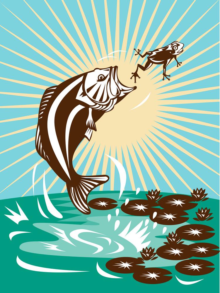 Largemouth Bass Jumping Catching Frog