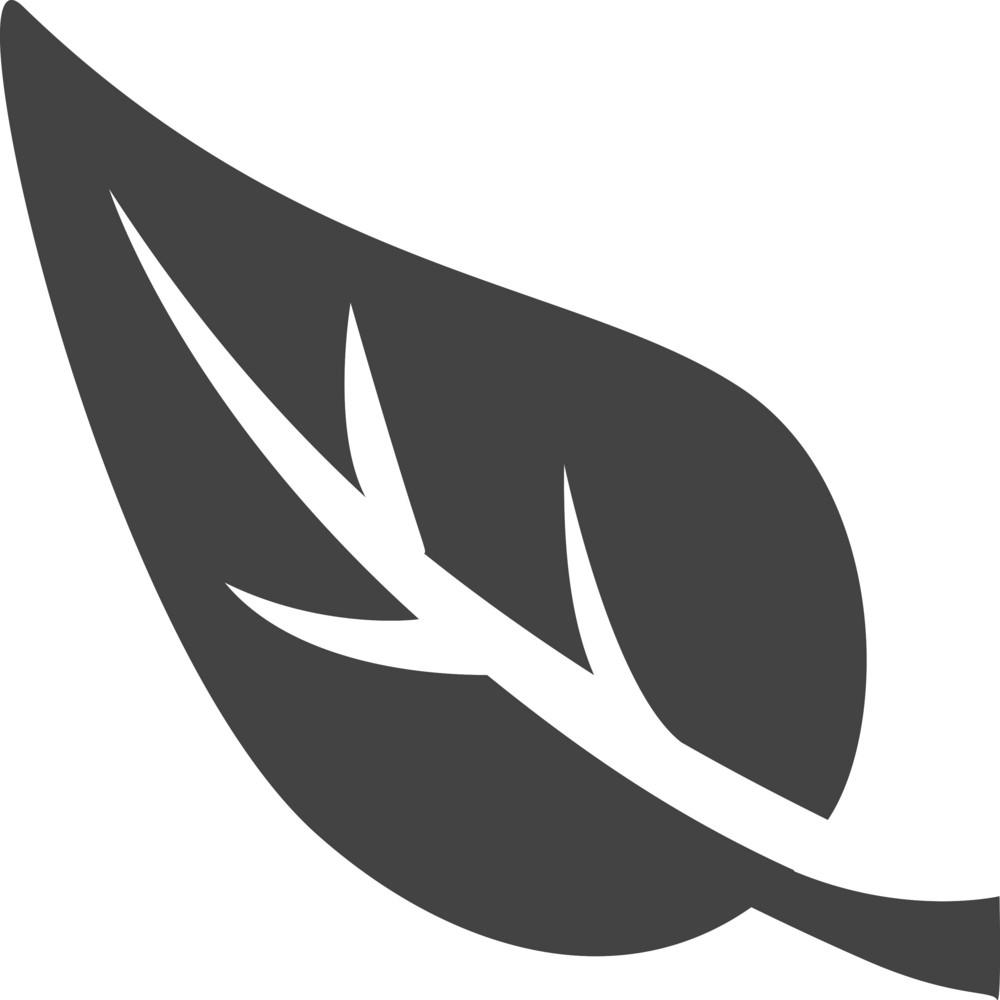 Leaf Glyph Icon