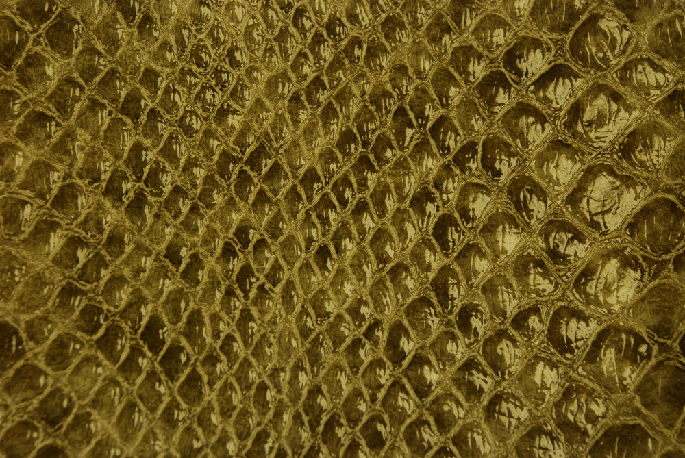 Leather 19 Texture