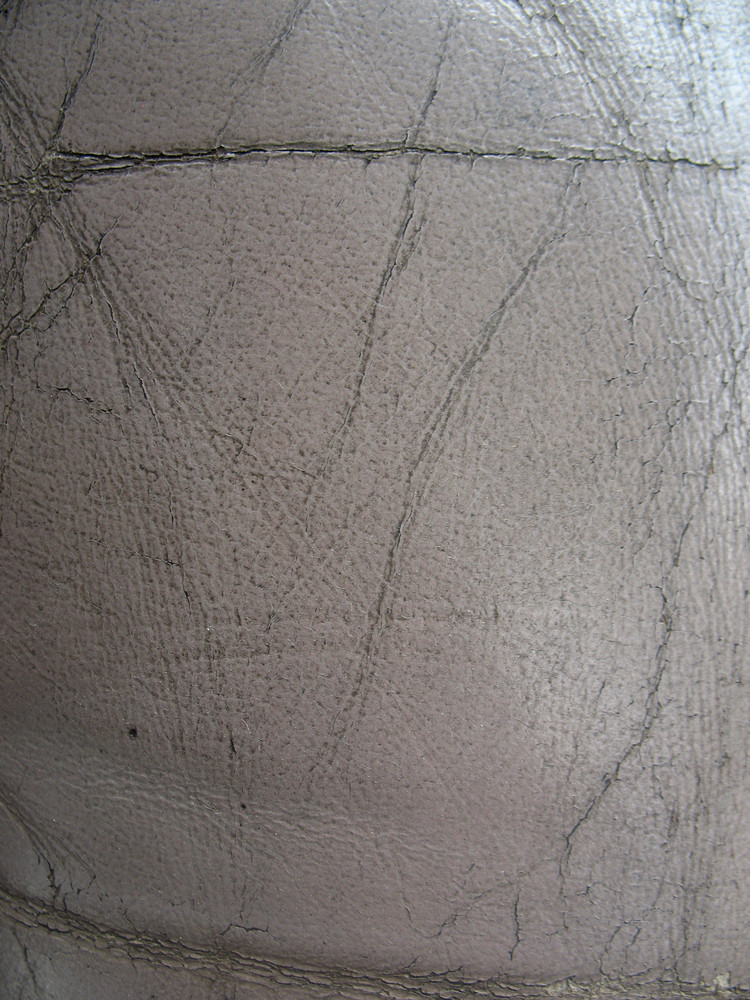 Leather 6 Texture
