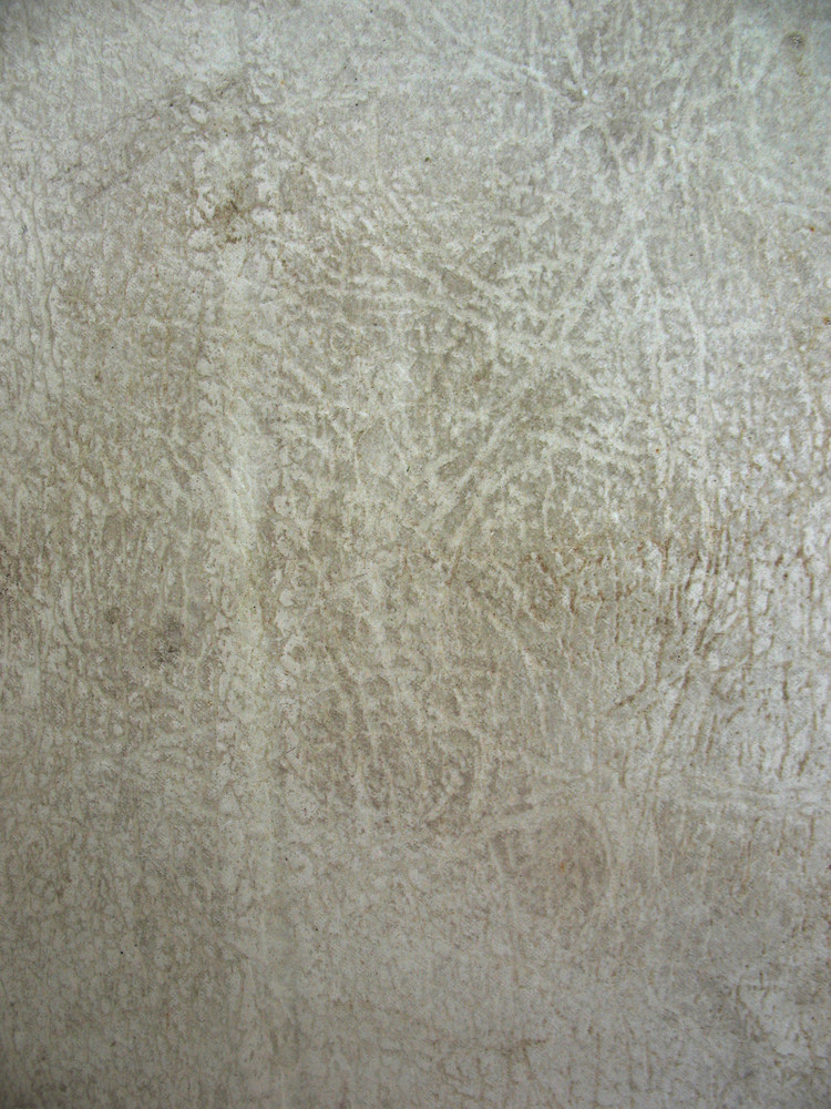 Leather 8 Texture
