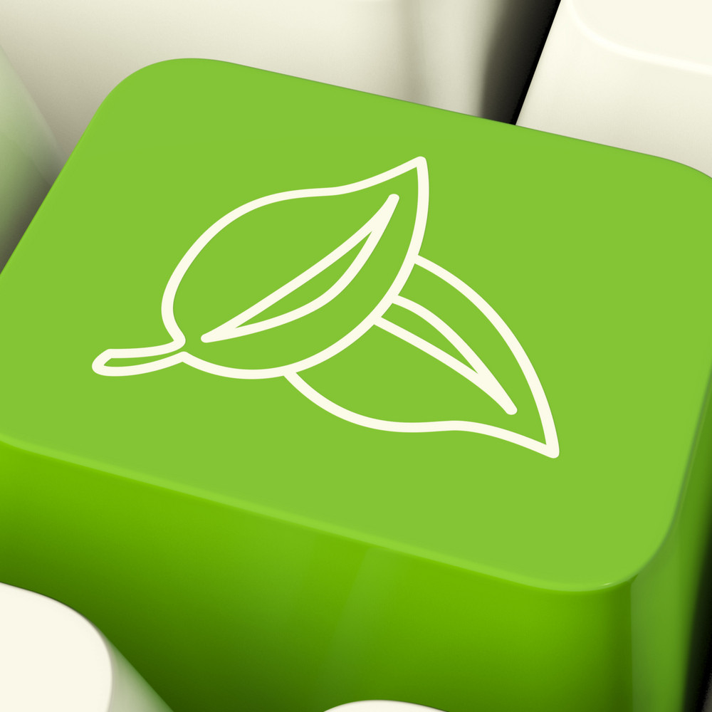 Leaves Icon Computer Key In Green Showing Recycling And Eco Friendly