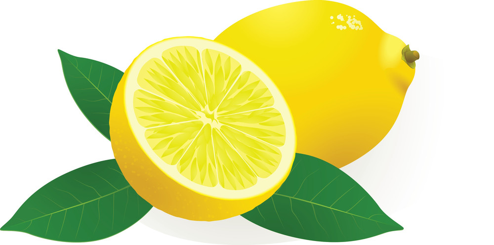 Lemon. Vector.