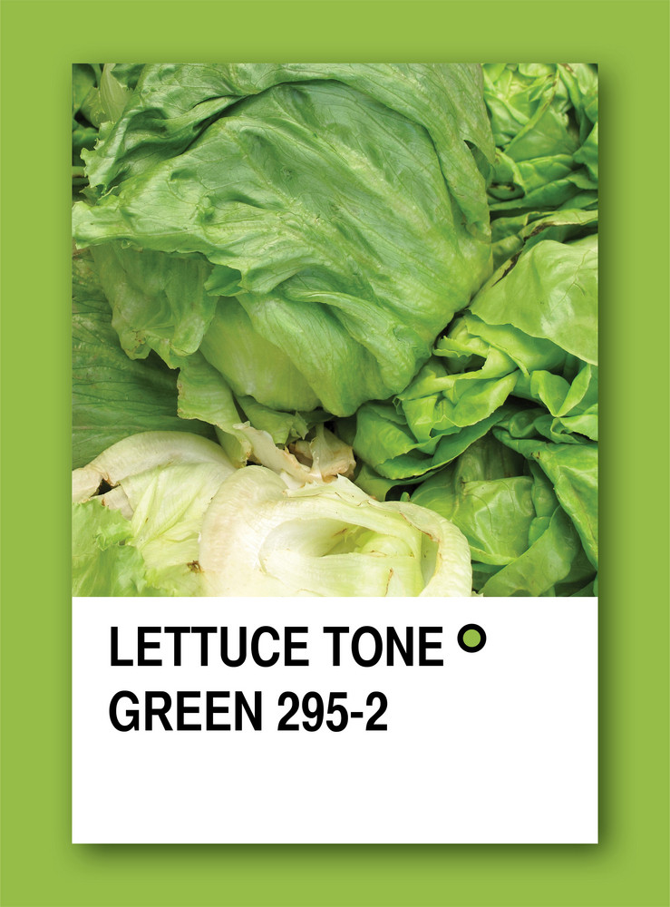 Lettuce Tone Green. Color Sample Design