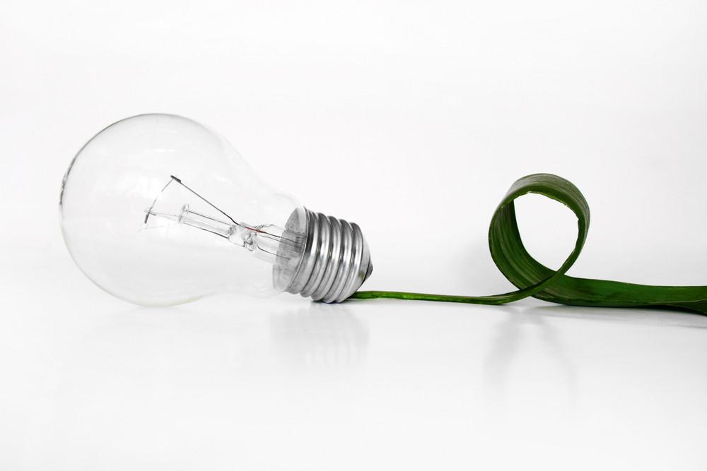 Light  Bulb And Leaf Concept