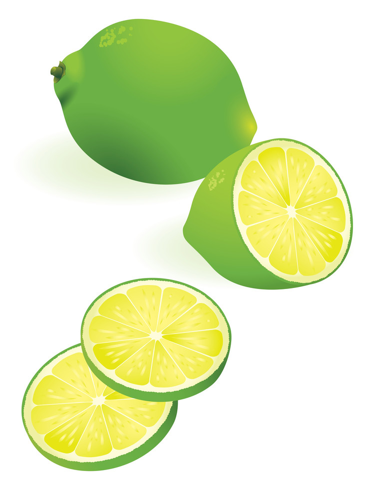Lime. Vector Illustration. No Gradient Meshes Used. Easy To Edit.