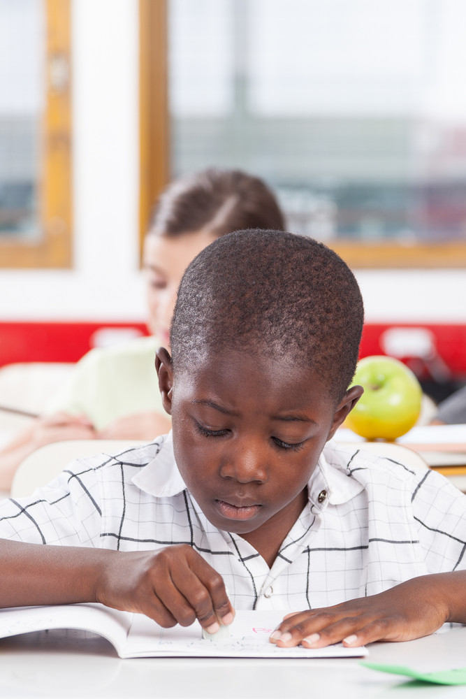 little boy studying