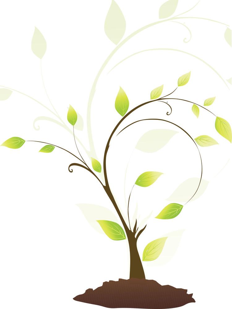 Little Green Plant Vector