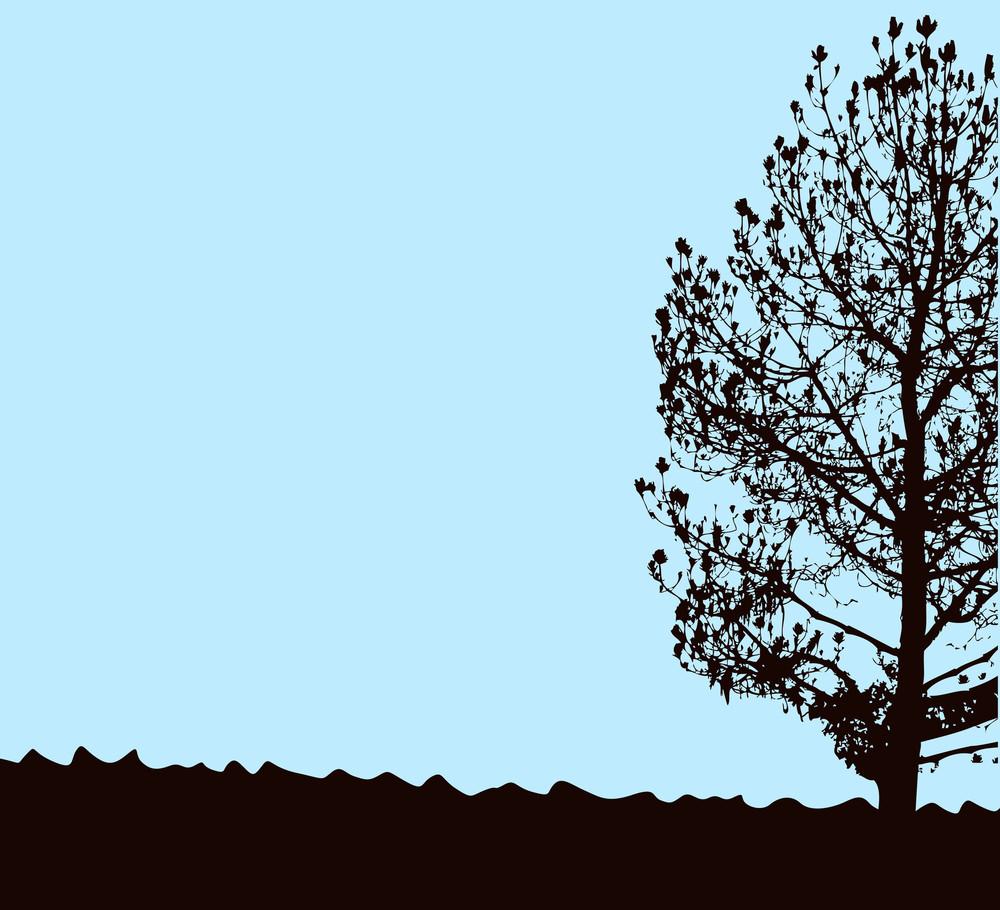 Lone Tree Background