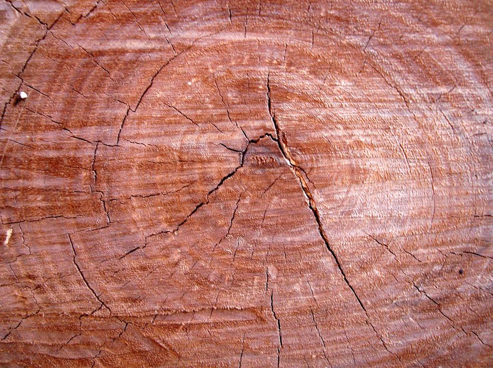 Lumber_wood_texture