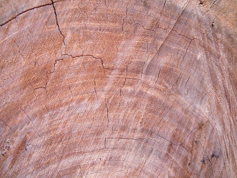 Lumber_wooden_texture