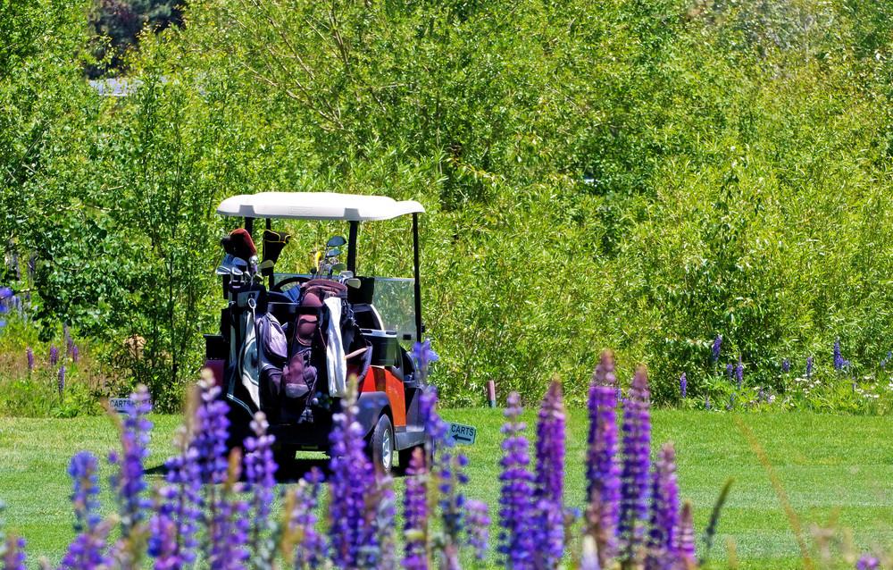 Luxury Golf Cart In Field