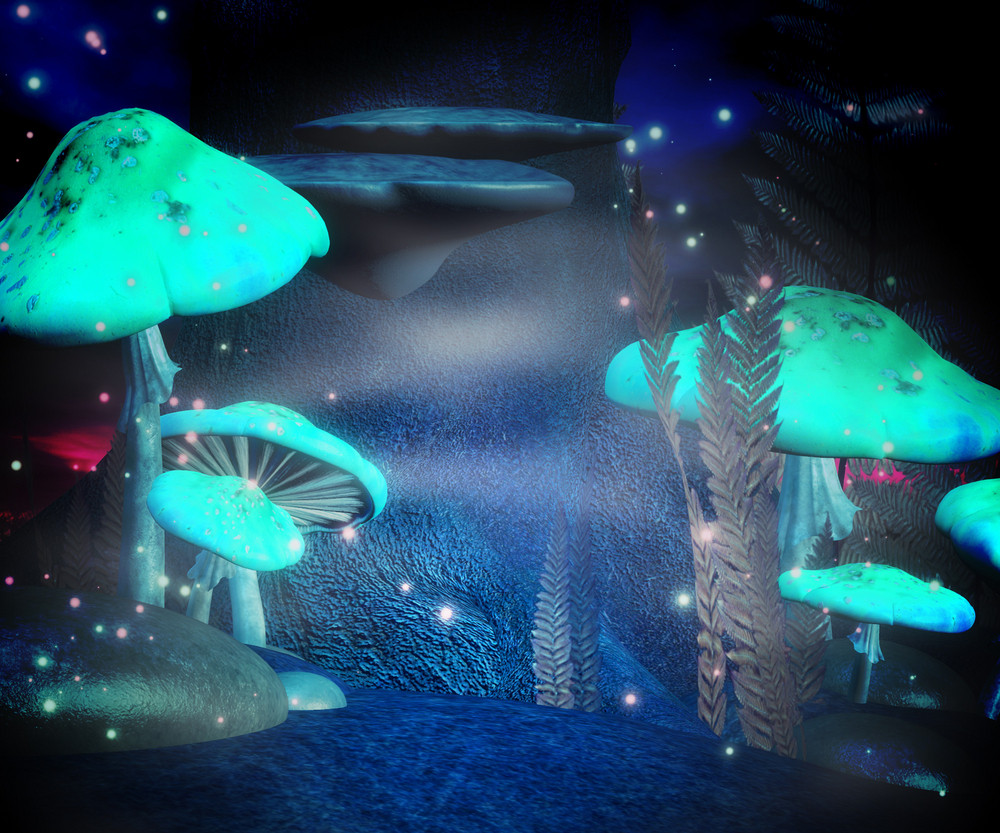 Magic Mushrooms Night Backdrop