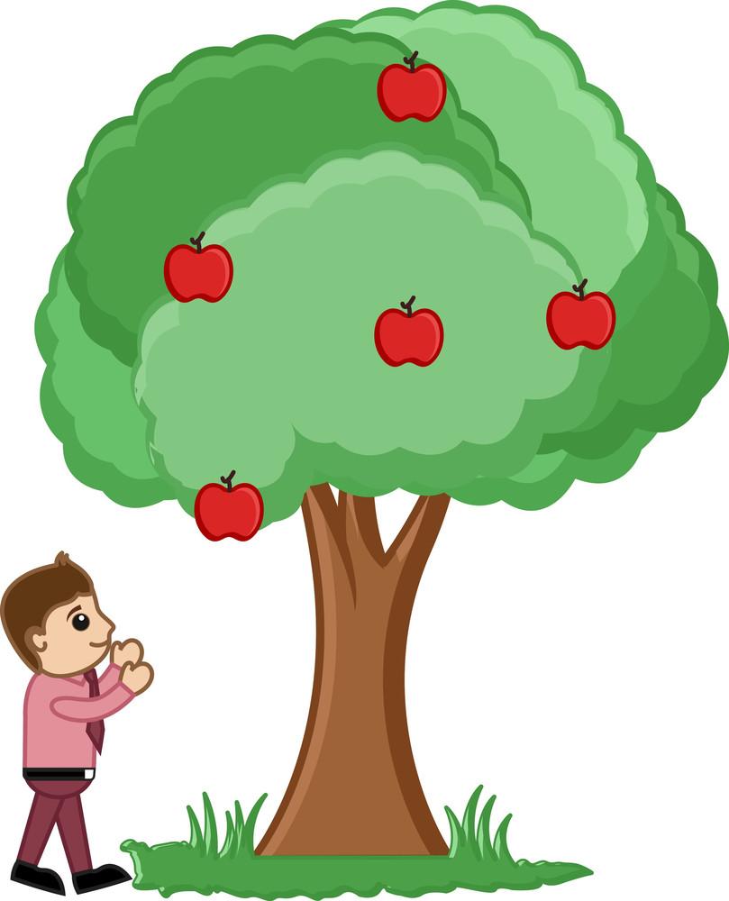 Man Plucking Fruits From Tree Vector Illustration