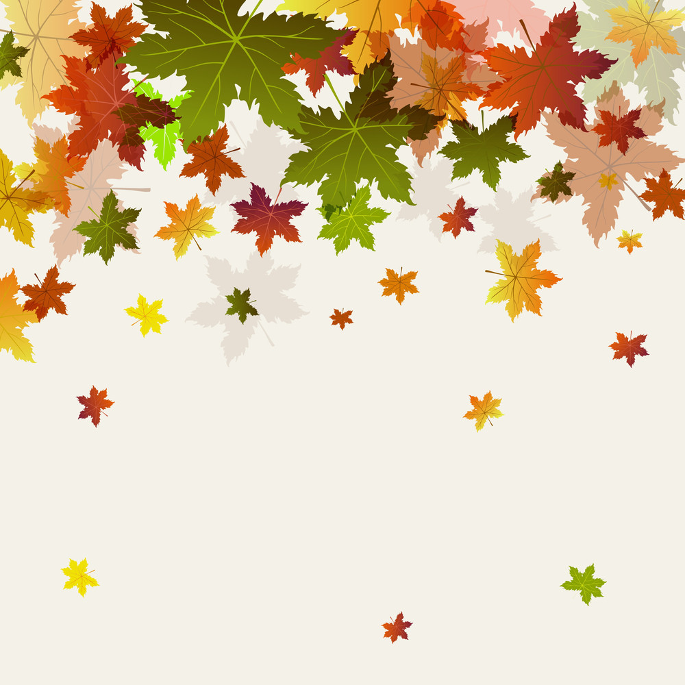 maple leaves on abstract background for autumn season royalty free